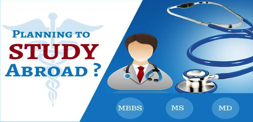 Image result for Abroad Study Counsellor